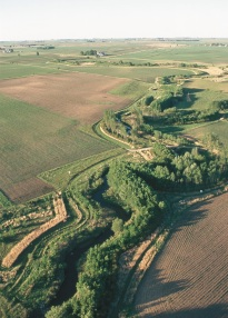 Forested riparian buffer system in an Iowa agricultural landscape.